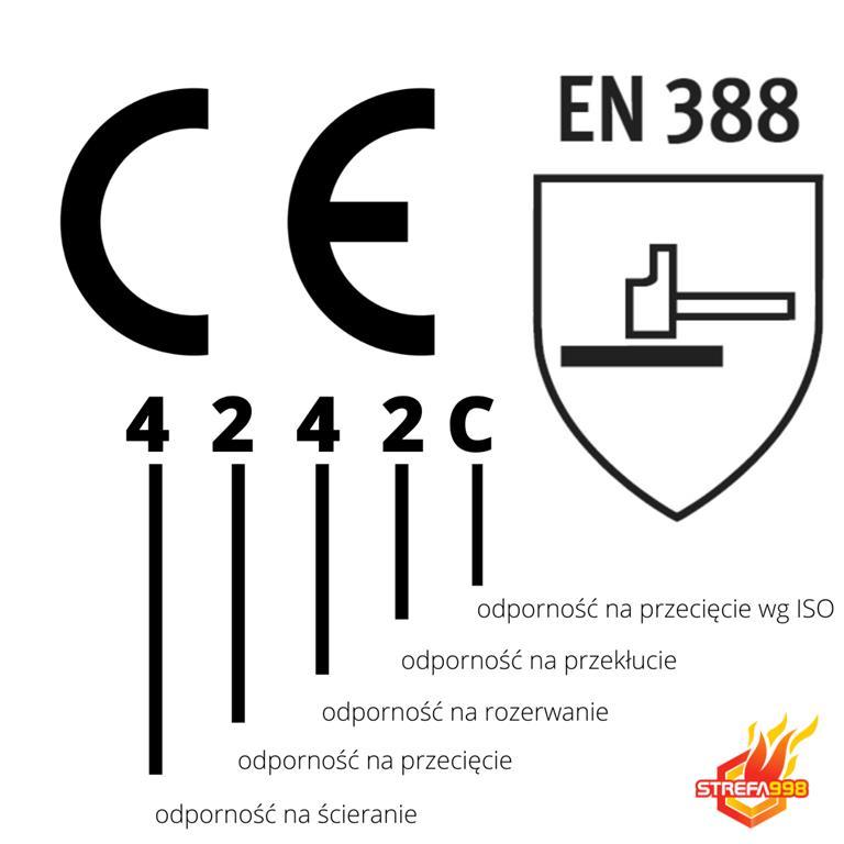 4 2 4 2 C (Copy).jpg