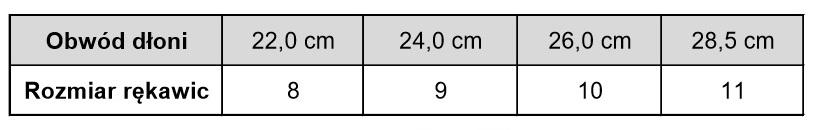 https://strefa998.pl/img/cms/r%C4%99kawice/tabela.jpg
